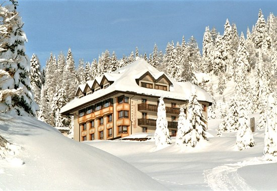 HOTEL AL GALLO FORCELLO - Nassfeld